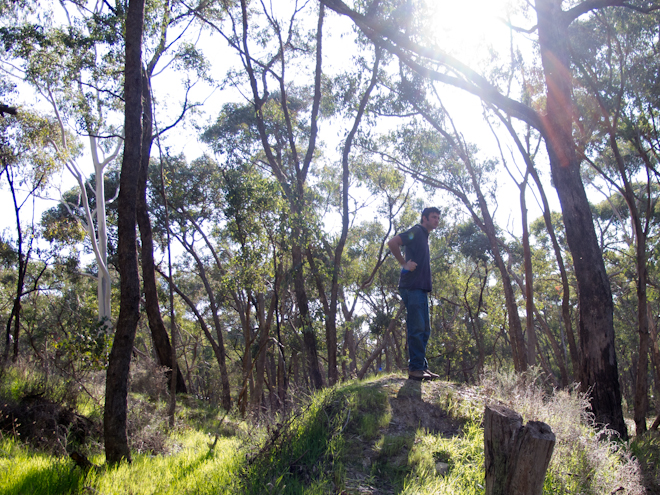 Tom investigates an old gold digging near Taradale, Victoria