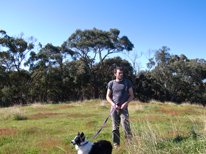 Dylan walking Gracie in a hilltop paddock in Taradale, Victoria