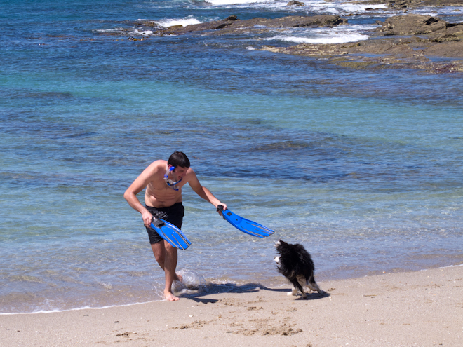Tom chasing Gracie dog with flippers at the Grey River Beach, the Otways