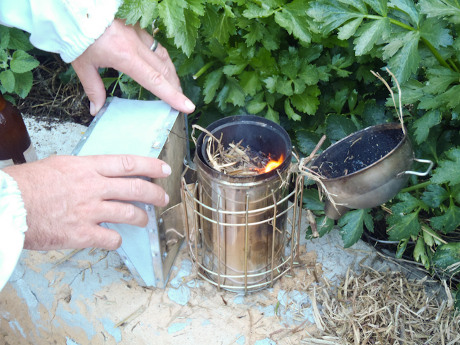 Smoker for bees being lit
