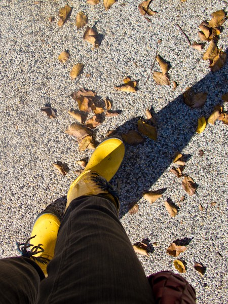 Elyse Boots Yellow by BOGS with yellow fallen leaves