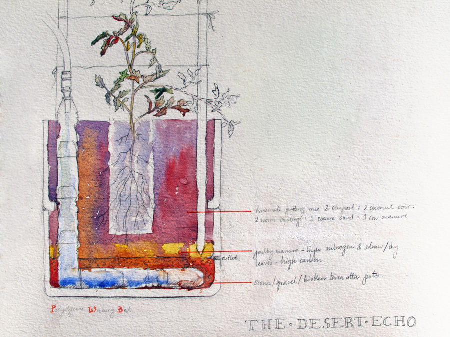 watercolour-diagram-double-decker-wicking-bed