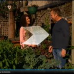 Jo's Permablitz Permaculture Inner City Home Garden on Better Homes & Gardens with Jason Hodges